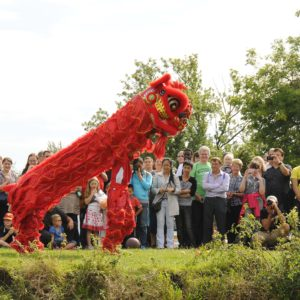 Chinese Lion dance 2011